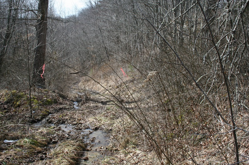 Part of original Trace Branch Road