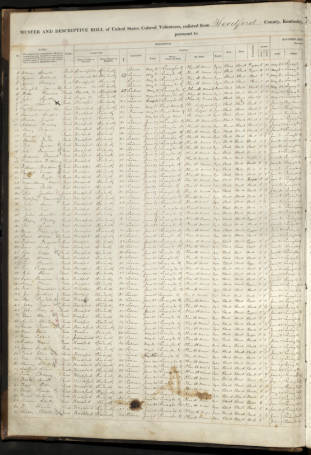 USCT Muster Roll