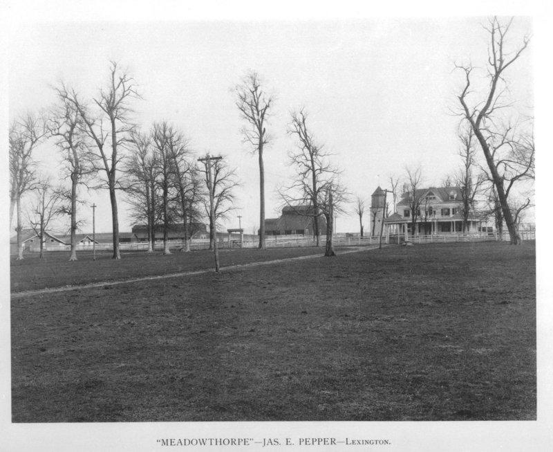 Meadowthorpe
